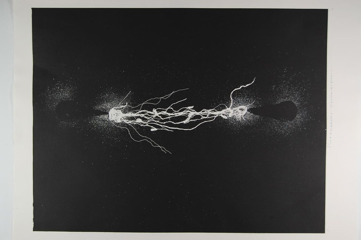 <strong>Out of Body 1.1</strong>, Susan Aldworth, monoprint, 56 x 76 cms, 2009.