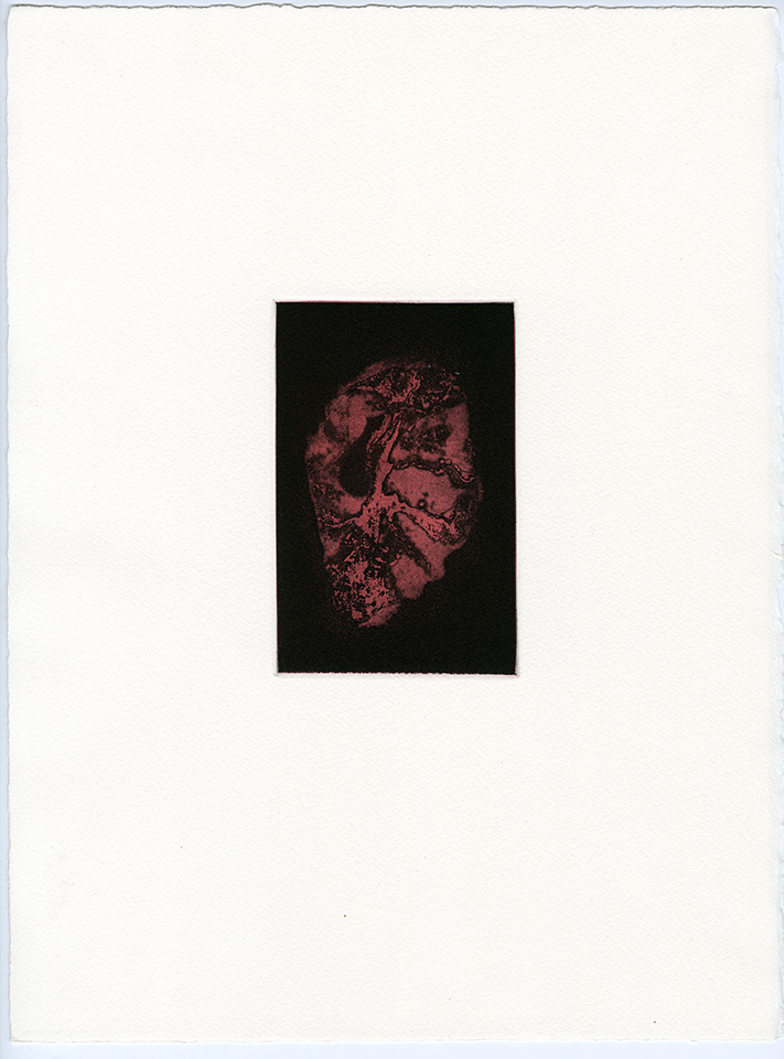 <strong>Transience 1</strong>, Susan Aldworth, etching and aquatint, 15 x 9 cms, 2013.