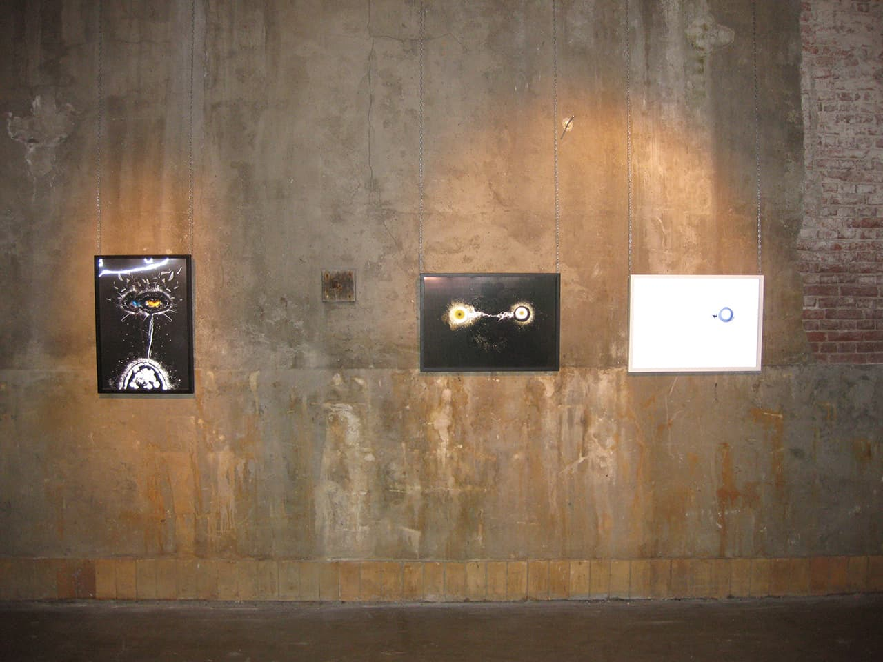 <strong>Transition 5, 2 & 1</strong>, Susan Aldworth, lenticular prints, 65 x 45 cms each. Installation at Scheltema Contemporary Gallery, Leiden, 2010.