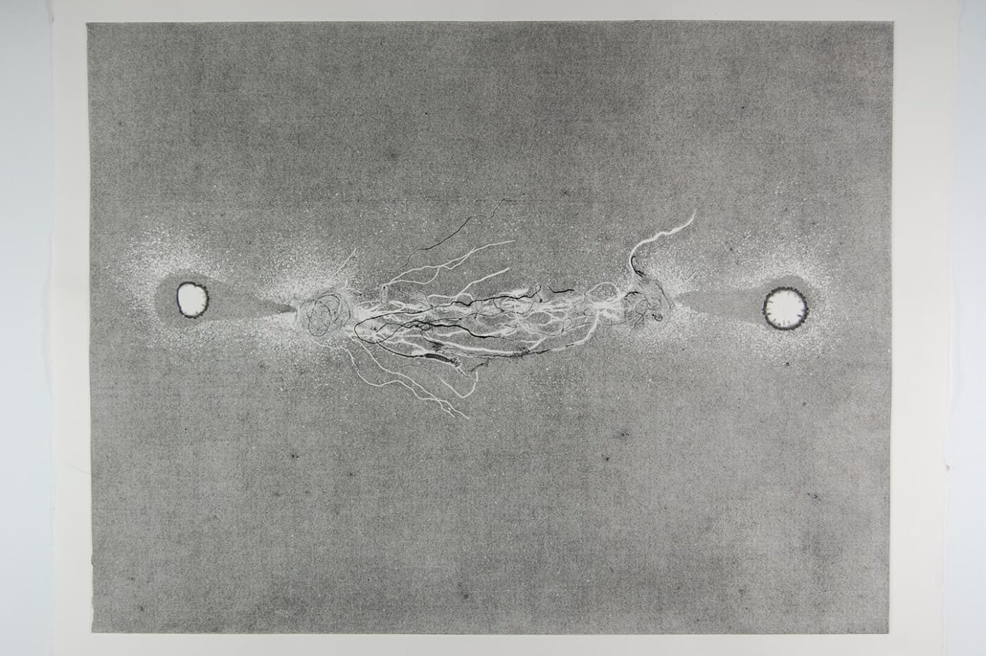 <strong>Out of Body 1.2</strong>, Susan Aldworth, monoprint, 56 x 76 cms, 2009.