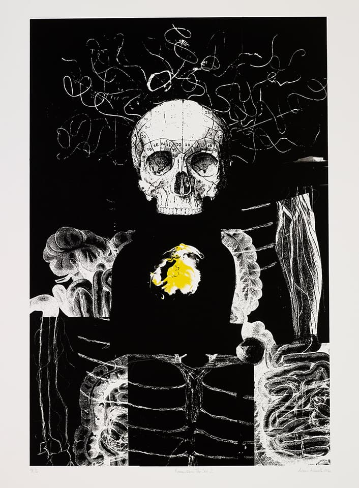 <strong>Reassembling the Self 2</strong>, Susan Aldworth, lithograph, 84 x 56 cms, 2012. Photograph by Anna Arca.