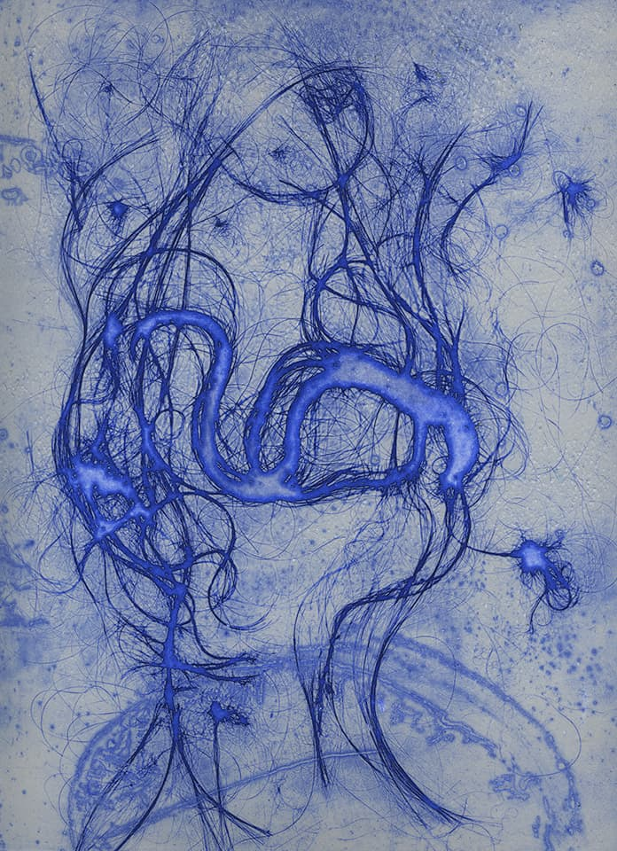 <strong>The Entangled Self 1</strong>, Susan Aldworth, etching, 31 x 24 cms, 2014.