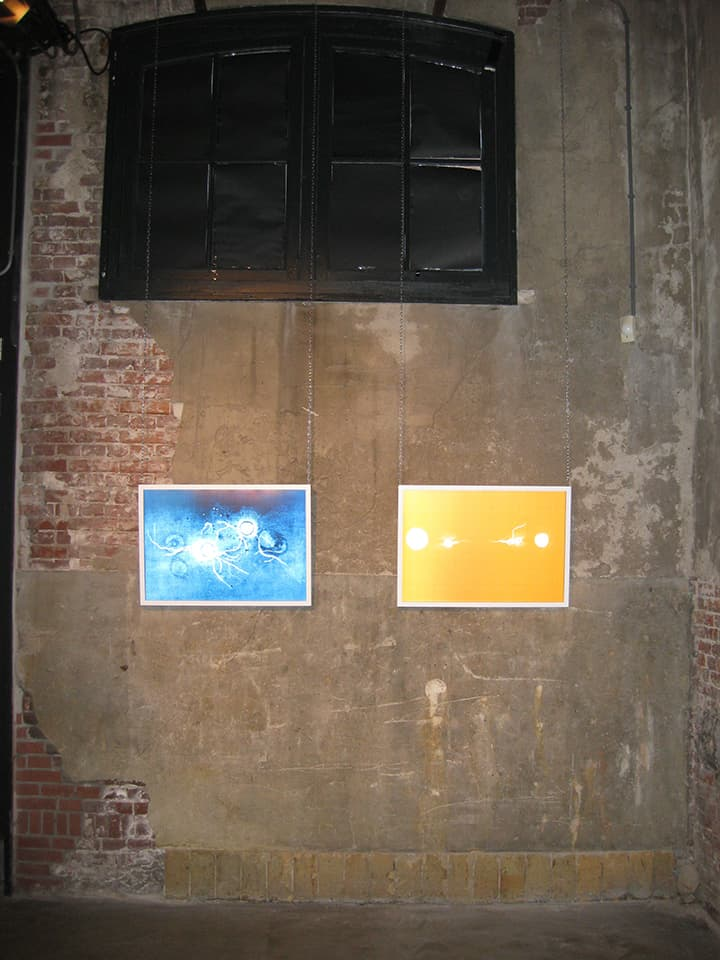 <strong>Transition 3 & 4</strong>, Susan Aldworth, lenticular prints, 65 x 45 cms each. Installation at Scheltema Contemporary Gallery, Leiden, 2010.
