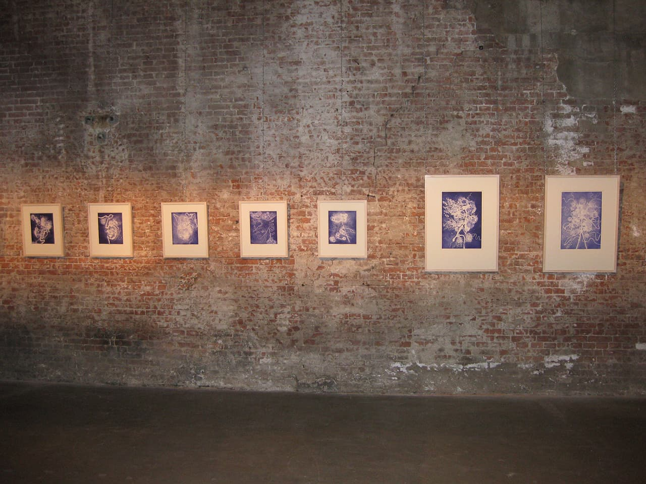 <strong>Brainscapes</strong>, Susan Aldworth, 2006, etching and aquatint prints, 30 x 25 cms and 50 x 35 cms. Installation at Scheltema Contemporary Gallery, Leiden, 2010.