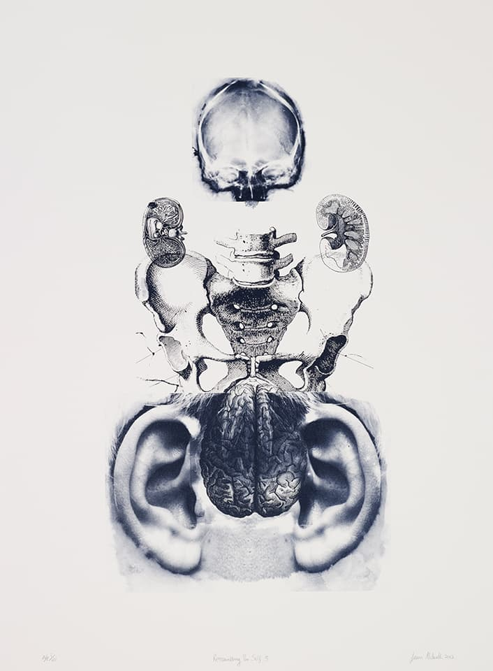 <strong>Reassembling the Self 3</strong>, Susan Aldworth, lithograph, 65 x 37 cms, 2012. Photograph by Anna Arca.