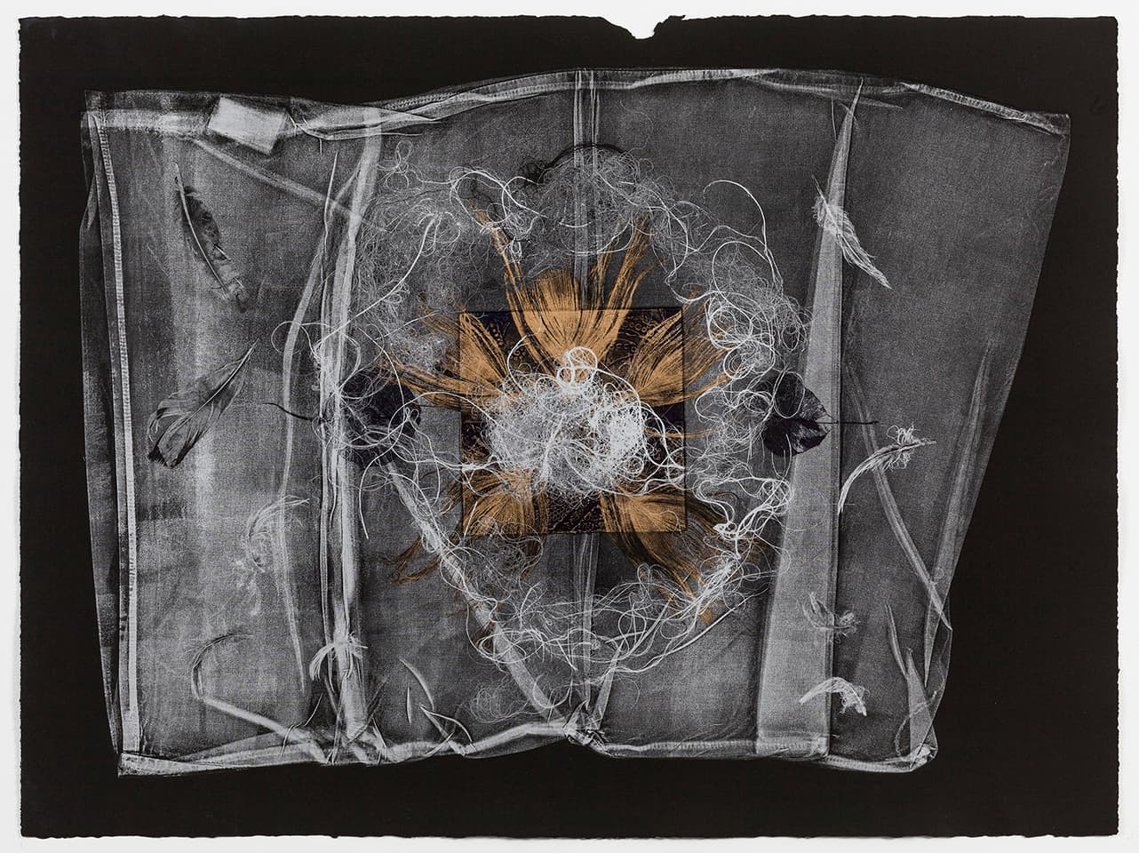 <strong>The Dark Self 3</strong>, Susan Aldworth, monoprint, 56 x 76 cms, 2017. Photograph by Peter Abrahams.