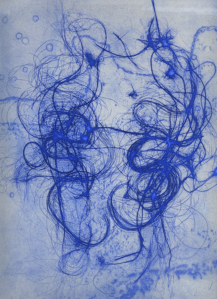 <strong>The Entangled Self 2</strong>, Susan Aldworth, etching, 31 x 25 cms, 2014.