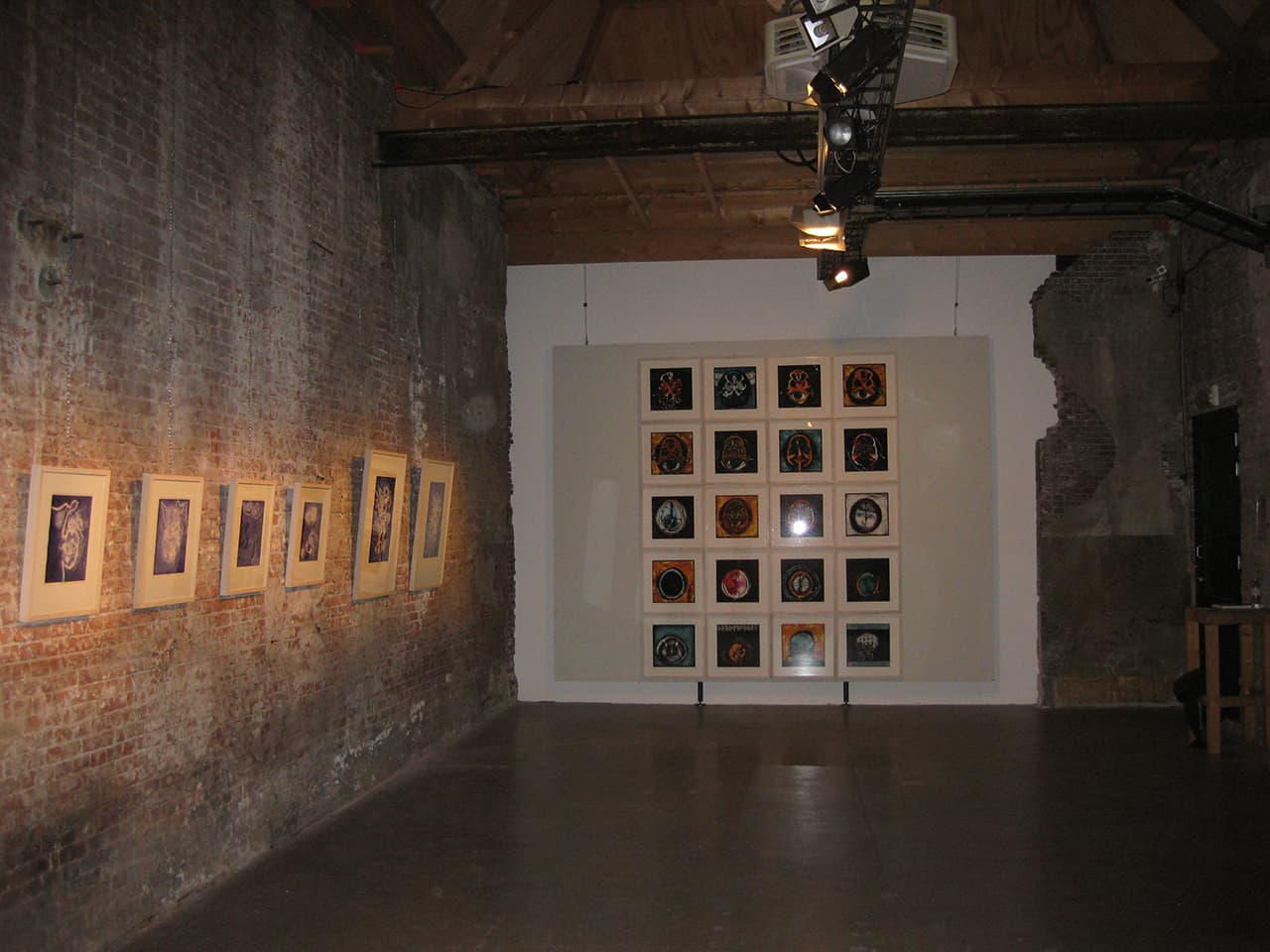 <strong>Cogito Ergo Sum 3</strong>, Susan Aldworth, 20 archival digital prints, 35 x 35 cms each, 2006. Installation at Scheltema Contemporary Gallery, Leiden, 2010.