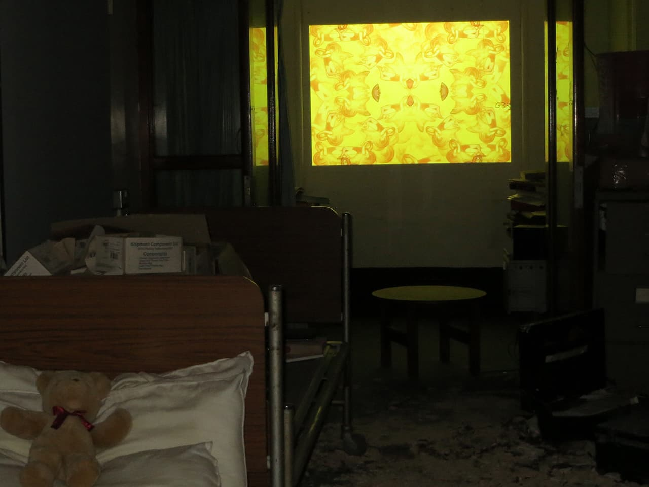 <strong>Going Native</strong>, video installation by Susan Aldworth at St Clement's Hospital, 2013. Photograph by Emma Crouch.