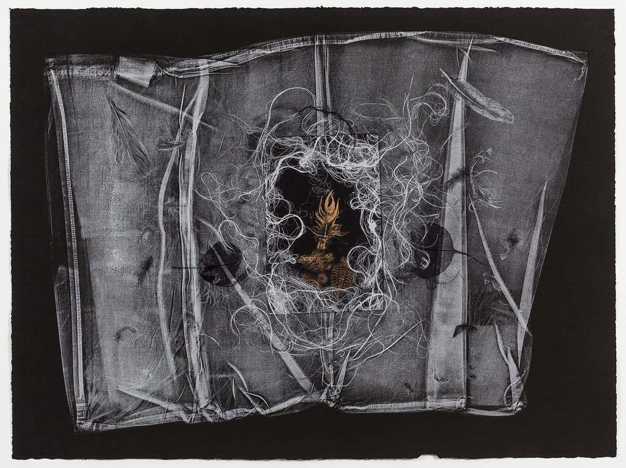 <strong>The Dark Self 11</strong>, Susan Aldworth, monoprint, 56 x 76 cms, 2017. Photograph by Peter Abrahams.