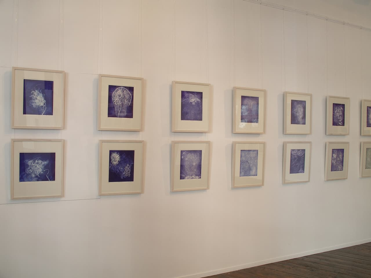 <strong>Brainscapes</strong>, installation of 30 etchings, Susan Aldworth, 2002. Photograph at Peninsula Arts by Jill Sheridan.