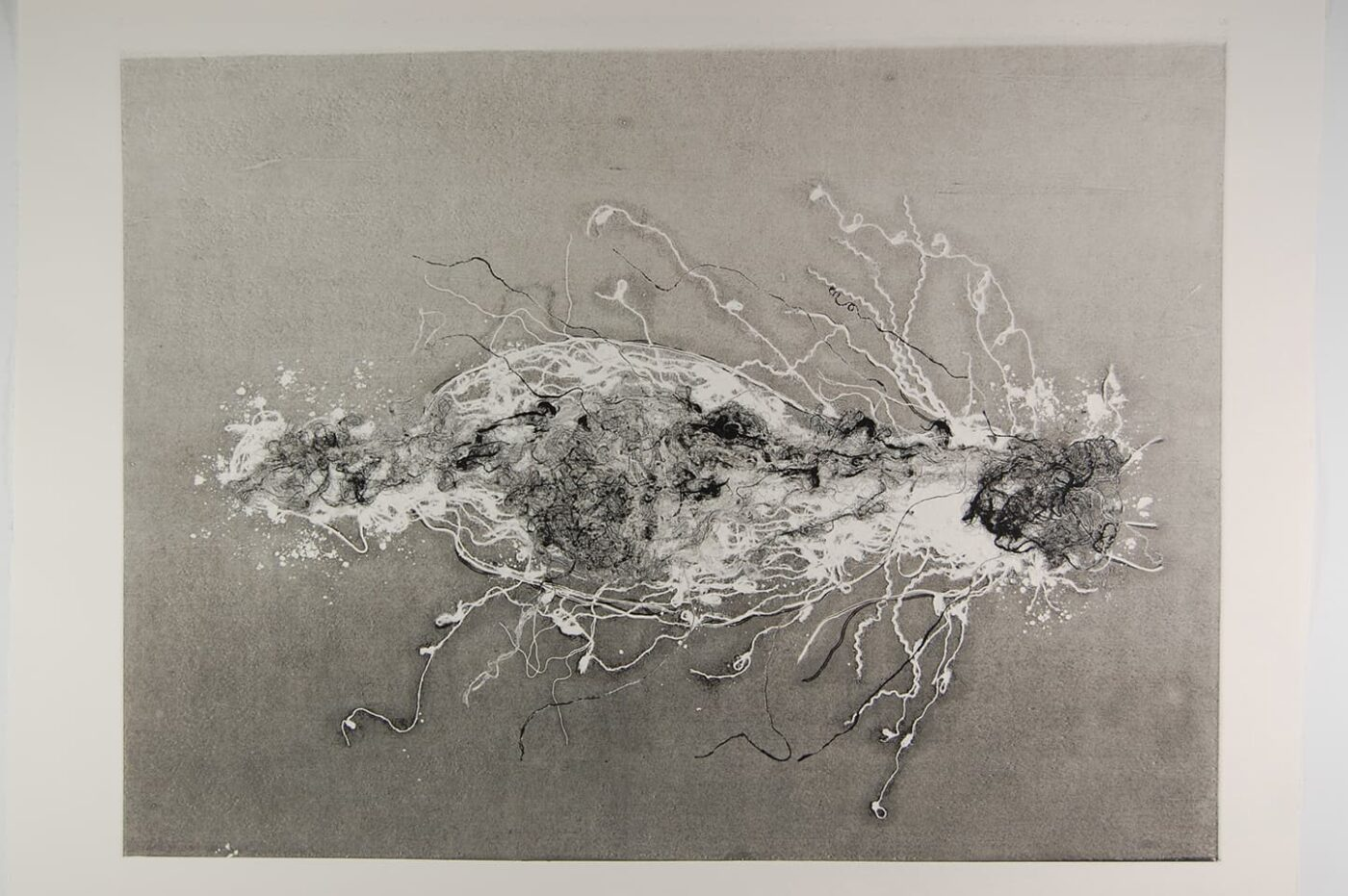 <strong>Out of Body 2.2</strong>, Susan Aldworth, monoprint, 56 x 76 cms, 2009.