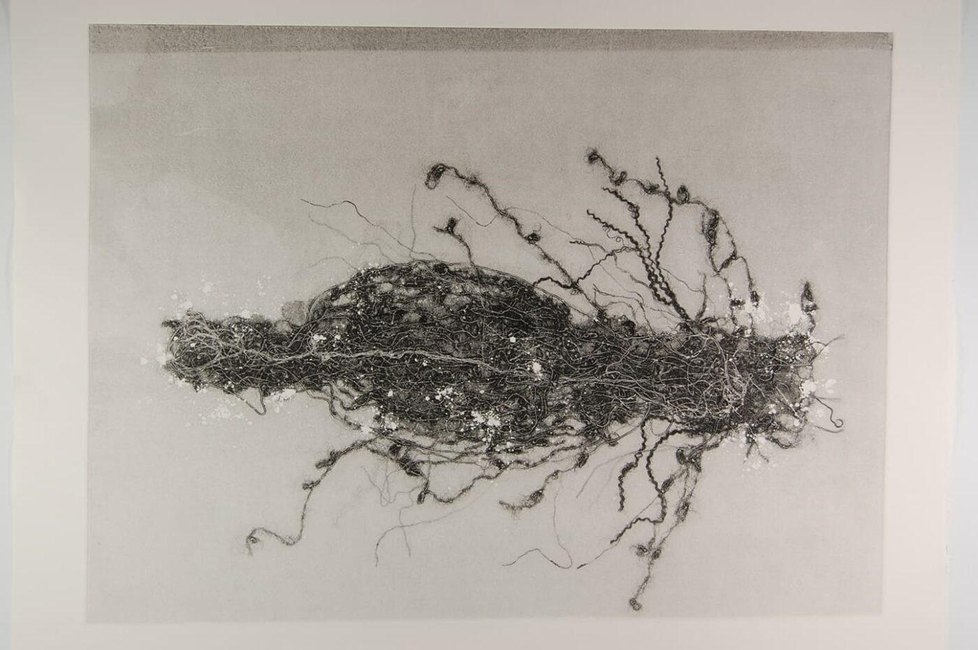 <strong>Out of Body 2.3</strong>, Susan Aldworth, monoprint, 56 x 76 cms, 2009.