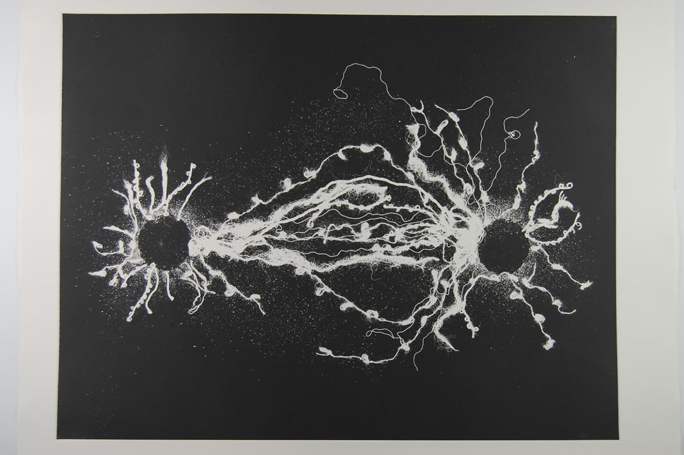 <strong>Out of Body 3.1</strong>, Susan Aldworth, monoprint, 56 x 76 cms, 2009.