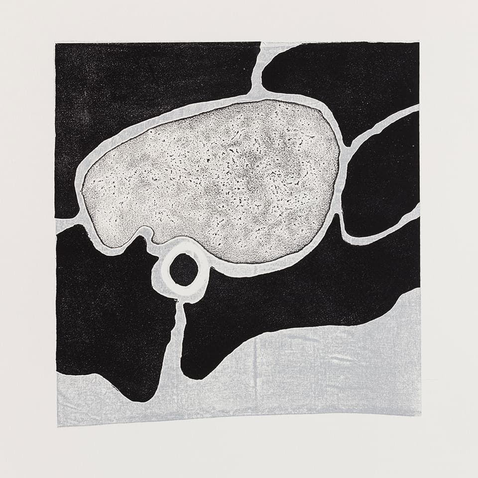 <strong>Respondences 7</strong>, Susan Aldworth, intaglio print, 37 x 37 cms, 2019. Photograph by Peter Abrahams.