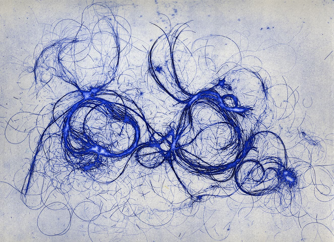 <strong>The Entangled Self 6</strong>, Susan Aldworth, etching, 25 x 31 cms, 2014.