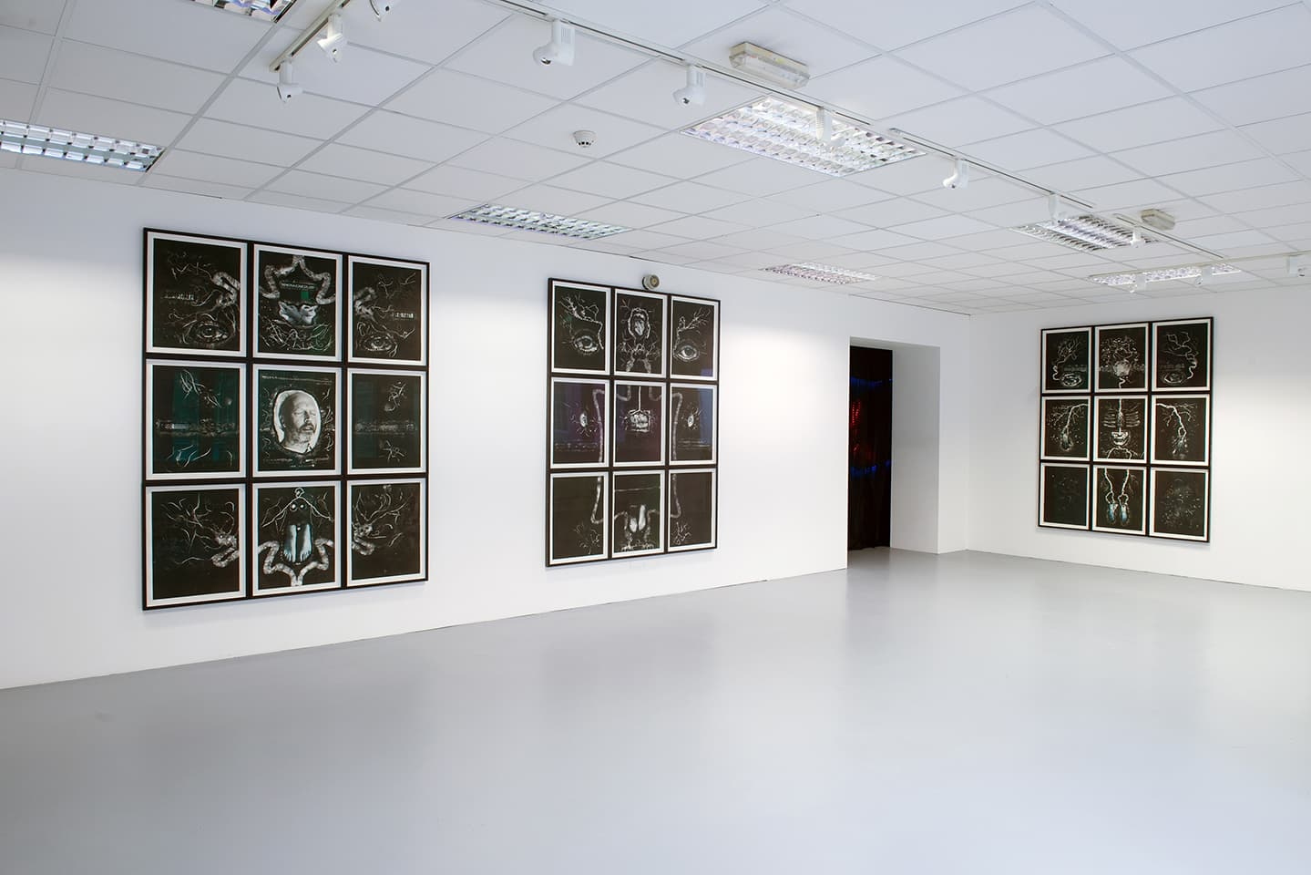 <strong>The Portrait Anatomised</strong>, Max (left), Fiona (centre) and Elisabeth (right), monotypes, Susan Aldworth, 2.5 x 2 metres each, 2013. Photograph by Colin Davison at Vane.