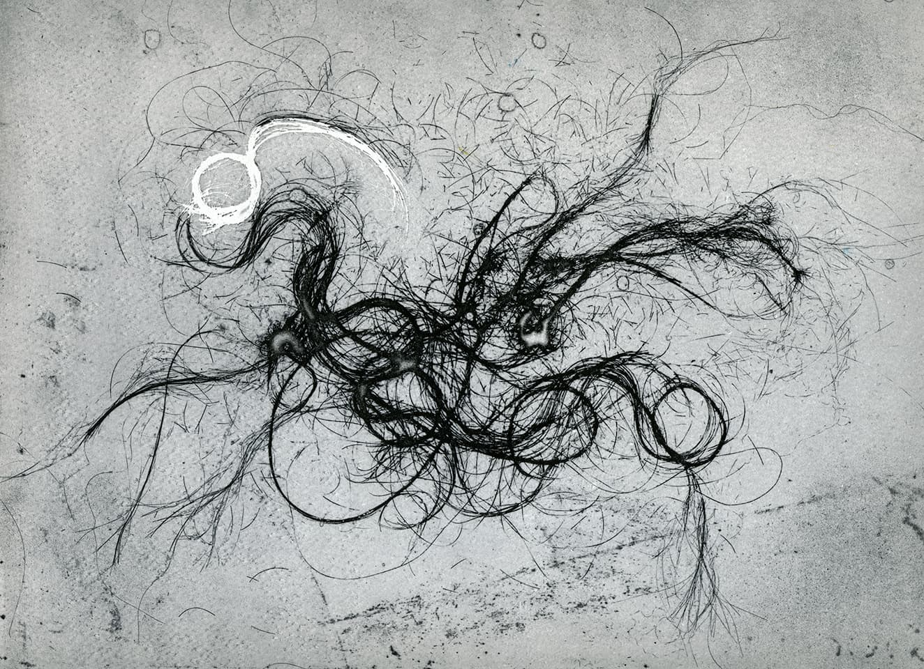 <strong>The Entangled Self 7</strong>, Susan Aldworth, etching, 25 x 31 cms, 2014.