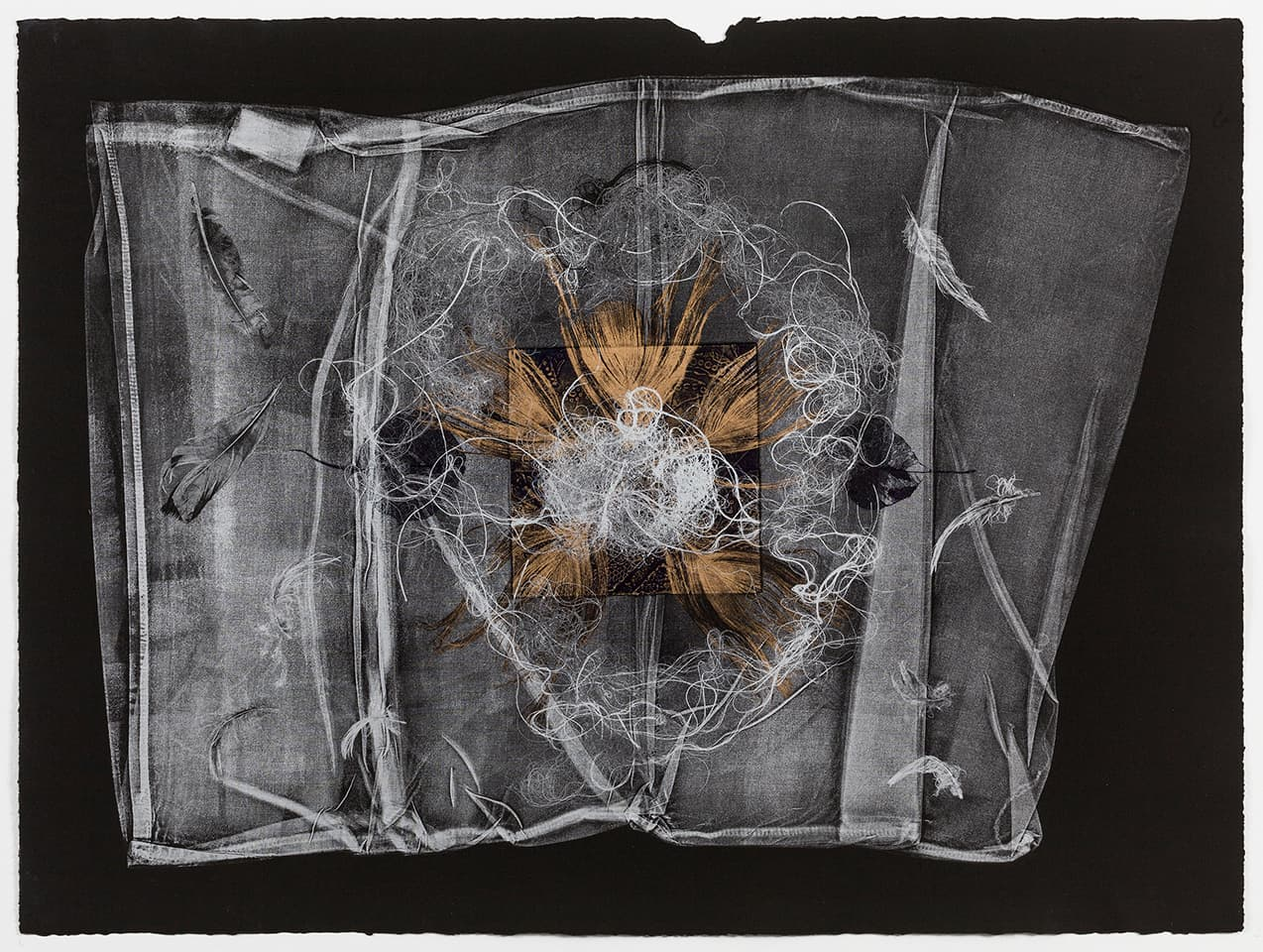 <strong>The Dark Self 3</strong>, Susan Aldworth, monoprint, 56 x 76 cms, one of a series 18 prints, 2017. Photograph by Peter Abrahams.