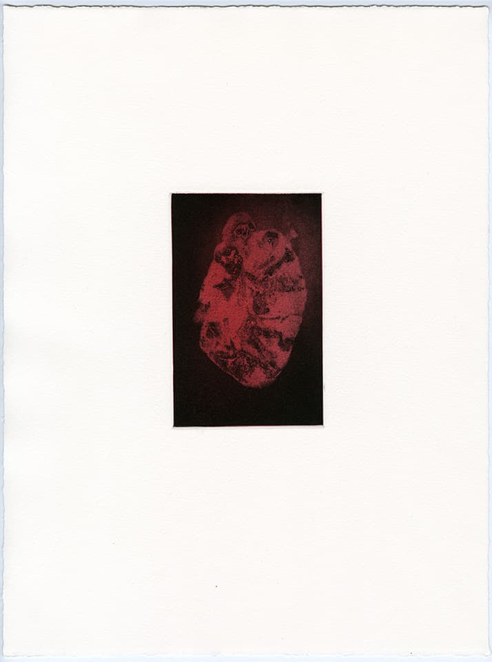 <strong>Transience 2</strong>, Susan Aldworth, etching and aquatint, 15 x 9 cms, 2013.