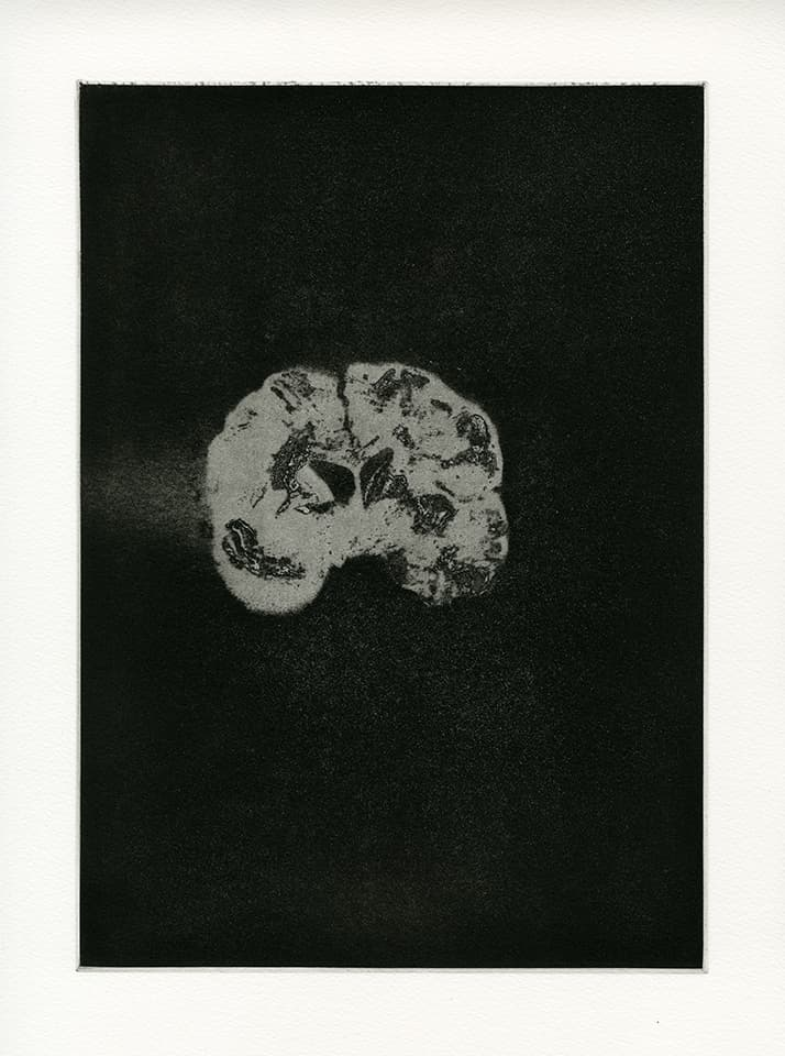 <strong>Transience 5</strong>, Susan Aldworth, etching and aquatint,  35 x 25 cms, 2013.