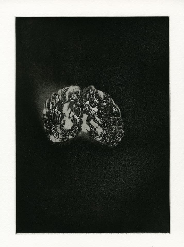 <strong>Transience 6</strong>, Susan Aldworth, etching and aquatint,  35 x 25 cms, 2013.