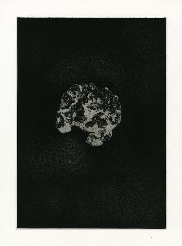 <strong>Transience 7</strong>, Susan Aldworth, etching and aquatint,  35 x 25 cms, 2013.